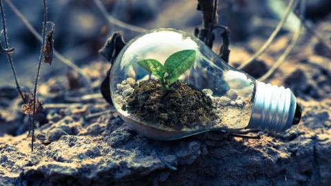 Made Green in Italy: impronta ambientale dei prodotti